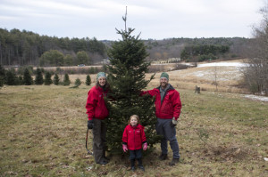 Your Third Stone Famers pick out their own Christmas tree