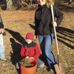 Taking home a seedling to replant